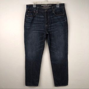AE Sz 14L Vintage Hi Rise Skinny Jeans Button Fly